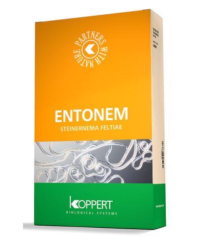 Entonem (Steinernema feltiae, Xenorhabdus bovienii)