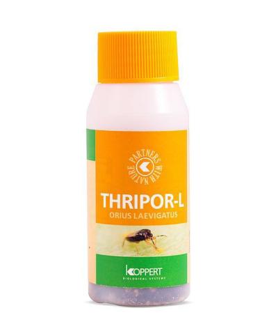 Thripor L