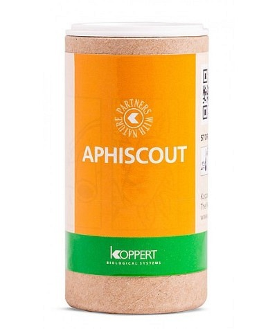 Aphiscout